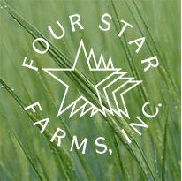 Four Star Farms - Whole Wheat Grains, Spelt Grain - Northfield